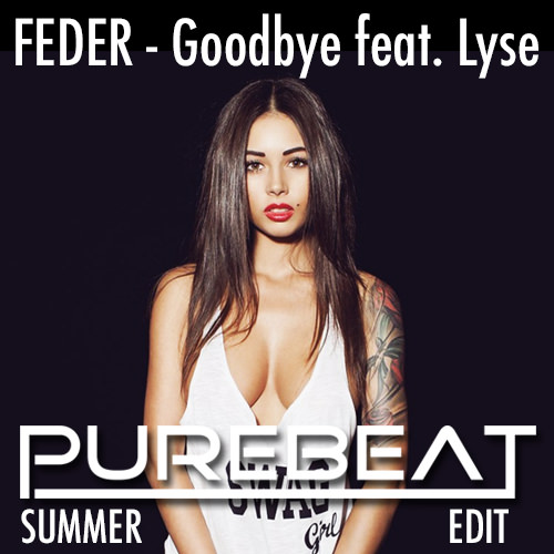Feder_-_Goodbye_feat._Lyse_Purebeat_Summer_Edit_cover_image_500X500.jpg